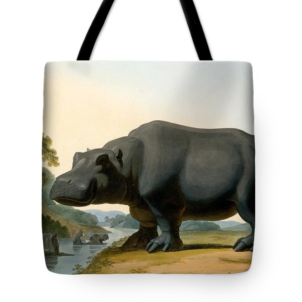 The Hippopotamus, 1804 Tote Bag by Samuel Daniell