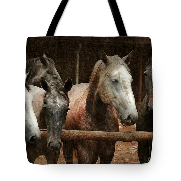 The Horses Tote Bag by Angel  Tarantella