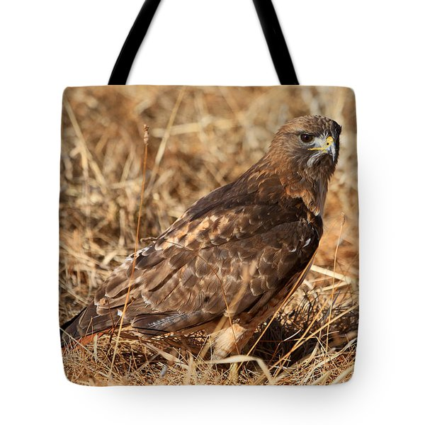 The Hunt 2 Tote Bag by Donna Kennedy