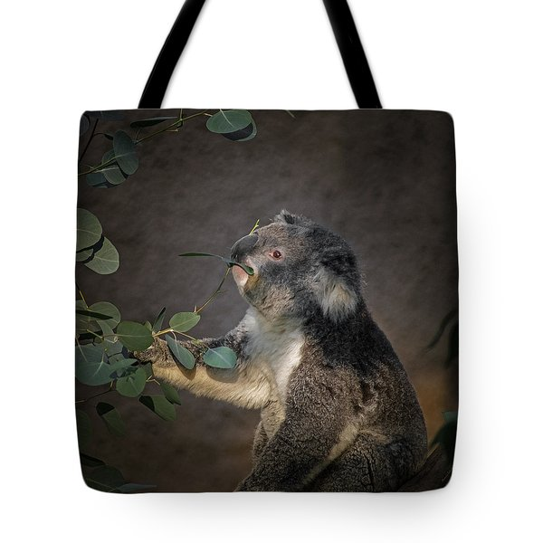 The Koala Tote Bag by Ernie Echols