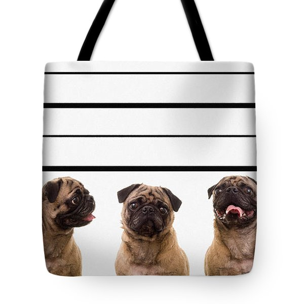 The Line Up Tote Bag by Edward Fielding