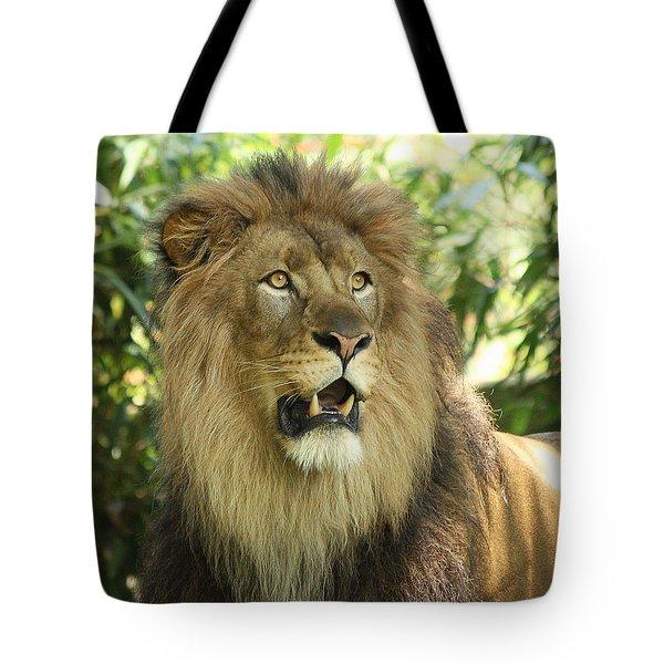 The Lion King Tote Bag by Kim Hojnacki