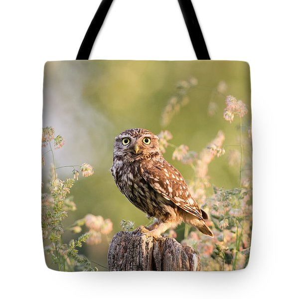 The Little Owl Tote Bag by Roeselien Raimond