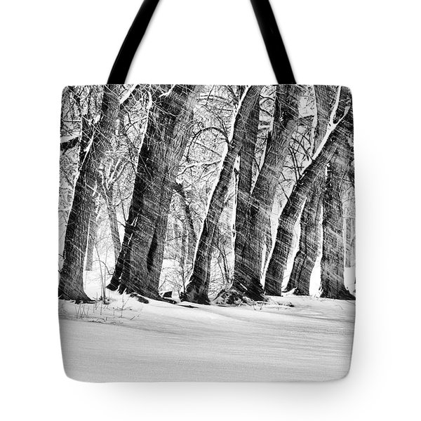 The Noreaster Bw Tote Bag by JC Findley