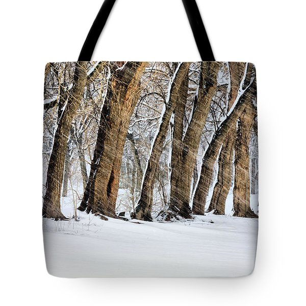 The Noreaster Tote Bag by JC Findley