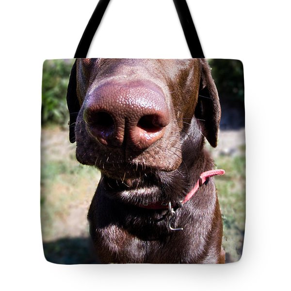 The Nose Knows Tote Bag by Roger Wedegis