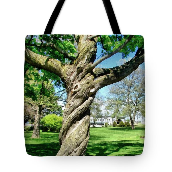 The Old Lady of the Green Tote Bag by Michelle Calkins