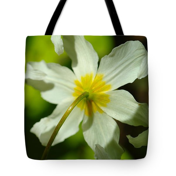 The Other Side Of Beauty Tote Bag by Jeff Swan