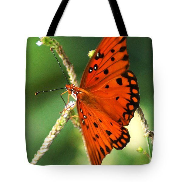The Passion Butterfly Tote Bag by Kim Pate