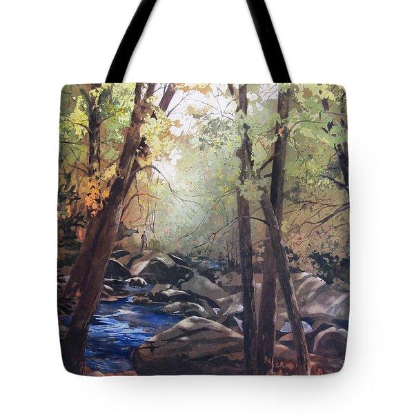 The Pilgrimage Tote Bag by Kris Parins
