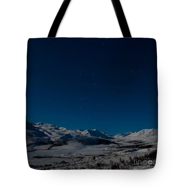 the presence of absolute silence Tote Bag by Priska Wettstein