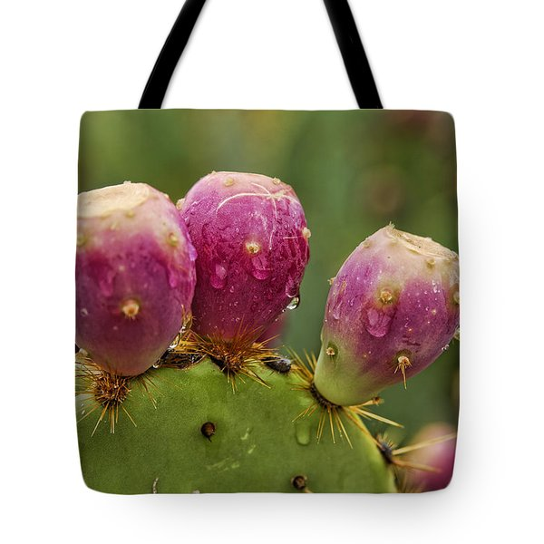The Prickly Pear  Tote Bag by Saija  Lehtonen