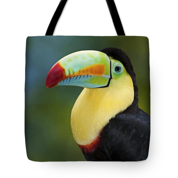 The Rainbow Bird.. Tote Bag by Nina Stavlund
