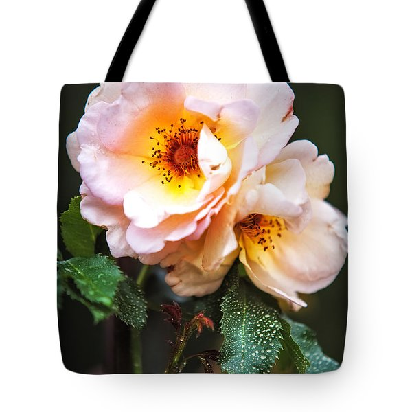 The Rose with Your Name. Park of De Haar Castle Tote Bag by Jenny Rainbow