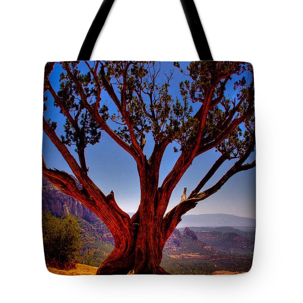 The Scene in many John Wayne Westerns Tote Bag by David Patterson