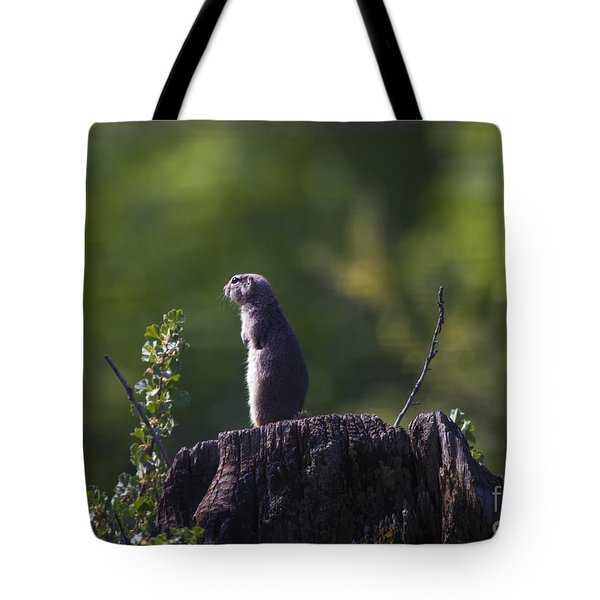 The Sentry Tote Bag by Mike  Dawson