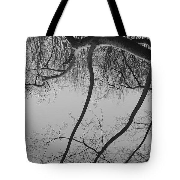 The Sky is Falling Tote Bag by Luke Moore