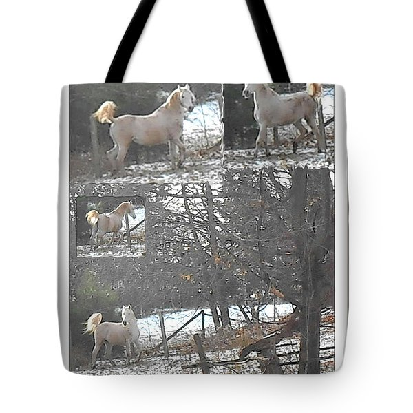 The Stallion Lives In The Country Tote Bag by Patricia Keller