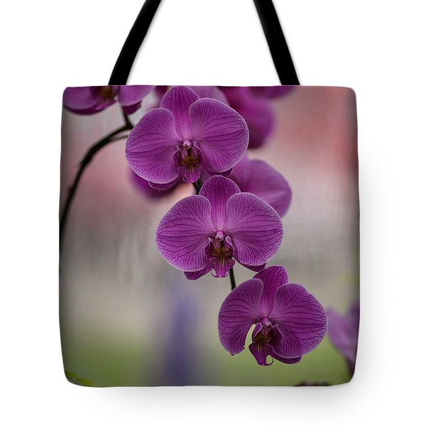 The Waiting Tote Bag by Mike Reid