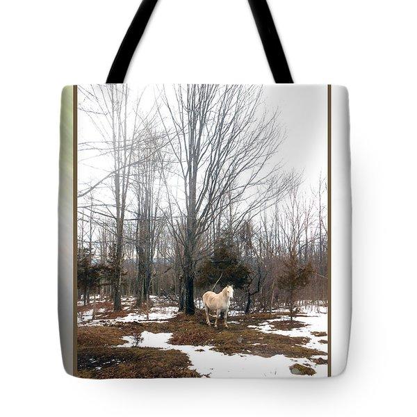 The White Stallion On A Snowless  Mound Tote Bag by Patricia Keller