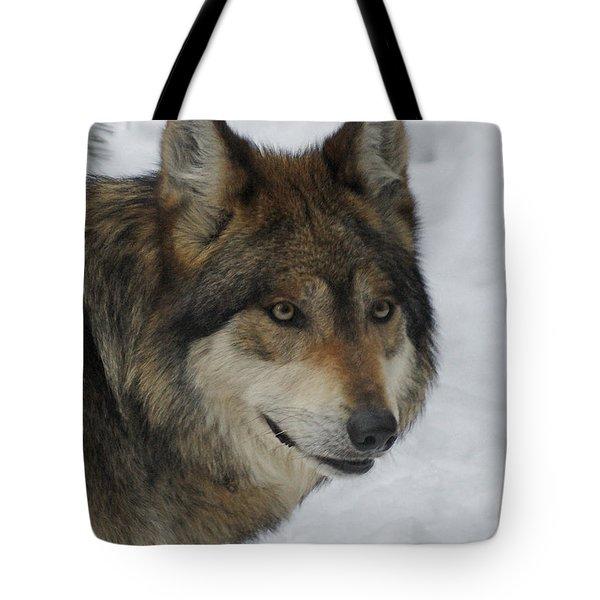 The Wolf 2 Tote Bag by Ernie Echols