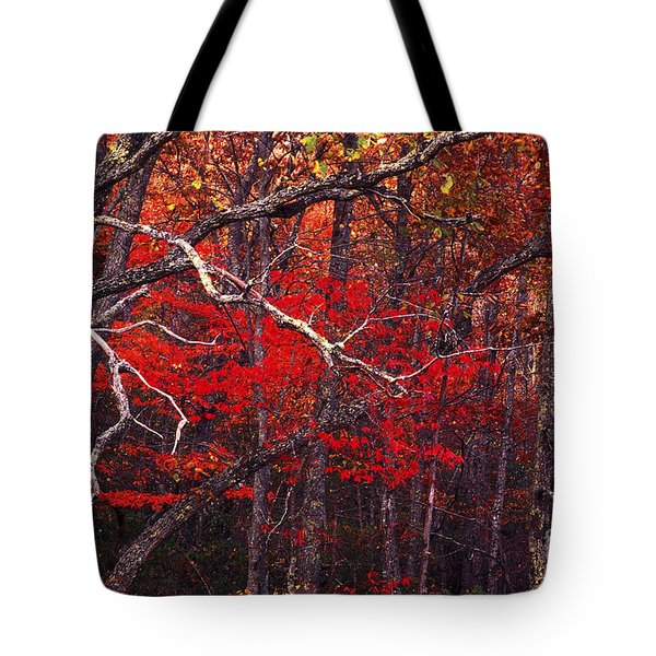 The Woods Aflame In Red Tote Bag by Paul W Faust -  Impressions of Light