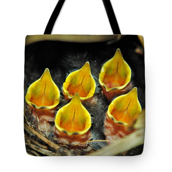 The Wren Quintet Tote Bag by Kelly Nowak