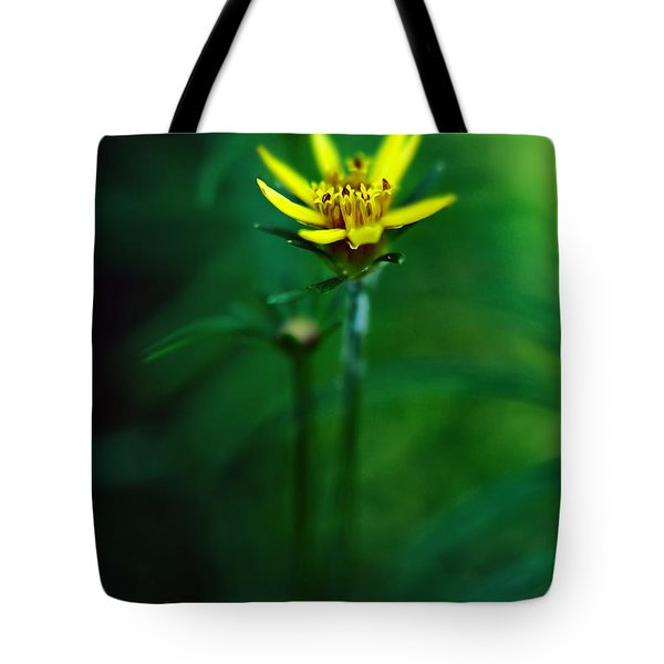 There's A Secret World Tote Bag by Lois Bryan