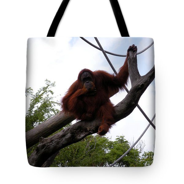 Thinking of you Tote Bag by Joseph Baril