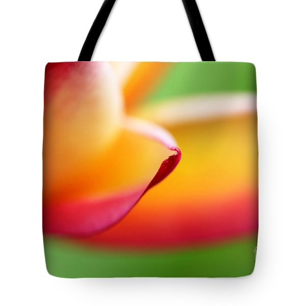This Part Of The Journey Tote Bag by C Ray  Roth