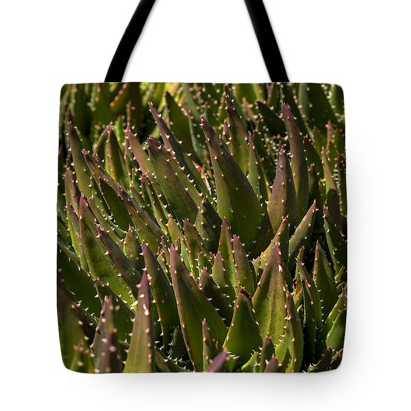 Thorns On Succulent Tote Bag by Garry Gay