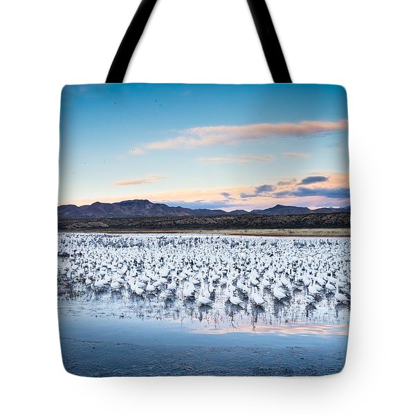 Snow Geese And Sandhill Cranes Before The Sunrise Flight - Bosque Del Apache, New Mexico Tote Bag by Ellie Teramoto