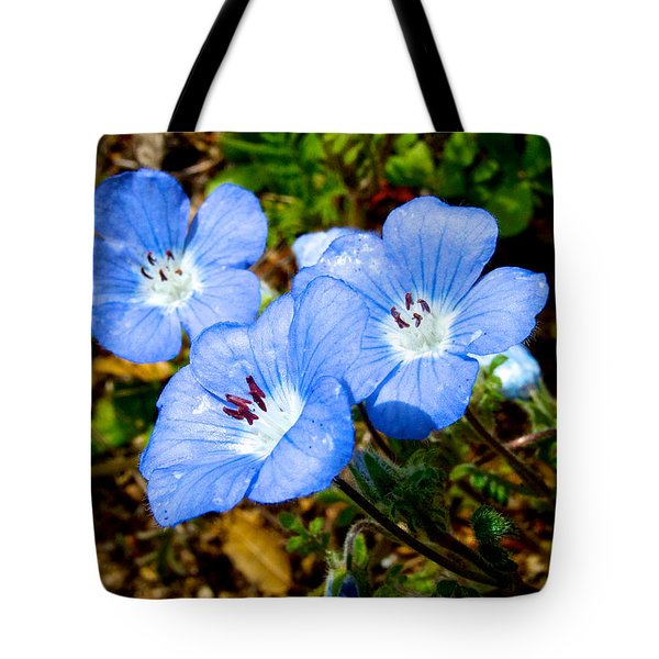 Three Baby Blue Eyes In Park Sierra-ca Tote Bag by Ruth Hager