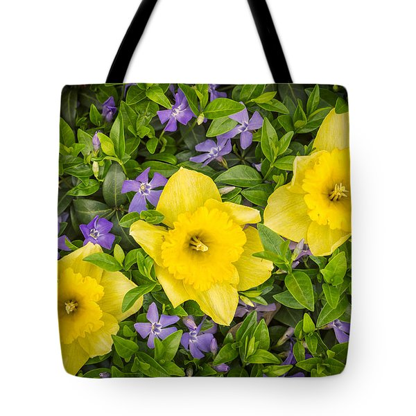 Three Daffodils In Blooming Periwinkle Tote Bag by Adam Romanowicz