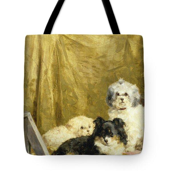 Three Dogs Tote Bag by Charles van den Eycken