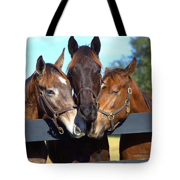 Three Friends Tote Bag by Gordon Elwell