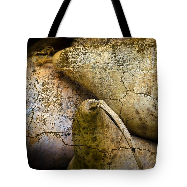 Three Gourds Tote Bag by David Gordon