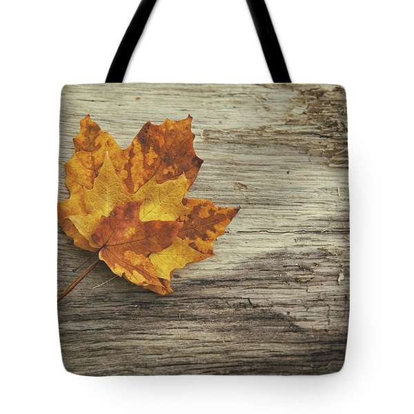 Three Leaves Tote Bag by Scott Norris