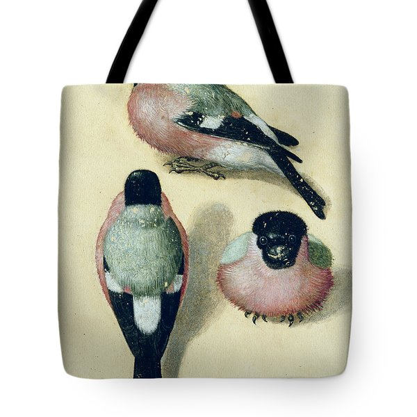 Three Studies Of A Bullfinch Tote Bag by Albrecht Durer