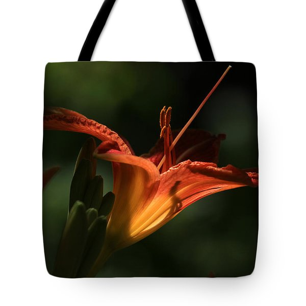 Throat Shadows Tote Bag by Donna Kennedy