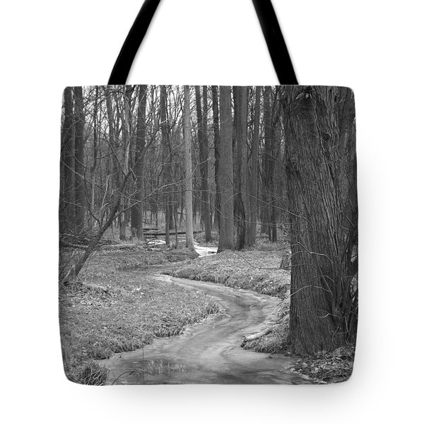 Through The Woods Tote Bag by Sara  Raber