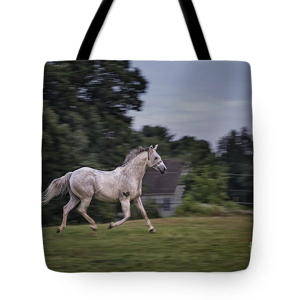 Thundersoul Tote Bag by Evelina Kremsdorf