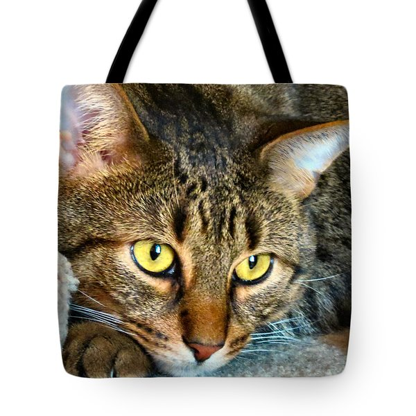 Tiger Time Tote Bag by Art Dingo