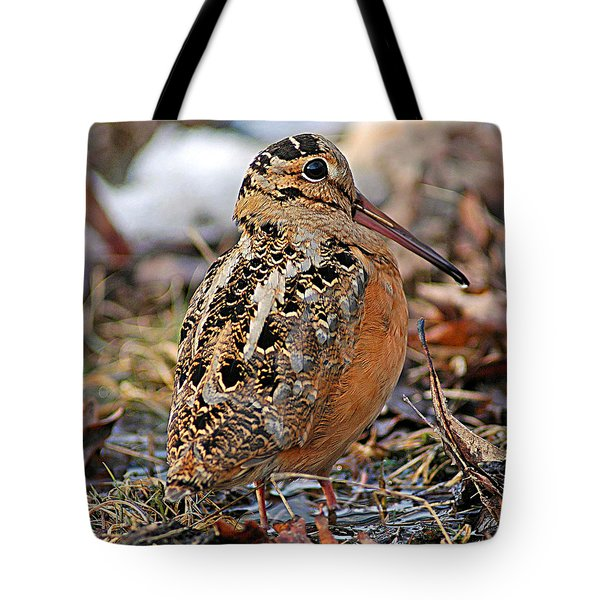 Timberdoodle The American Woodcock Tote Bag by Timothy Flanigan