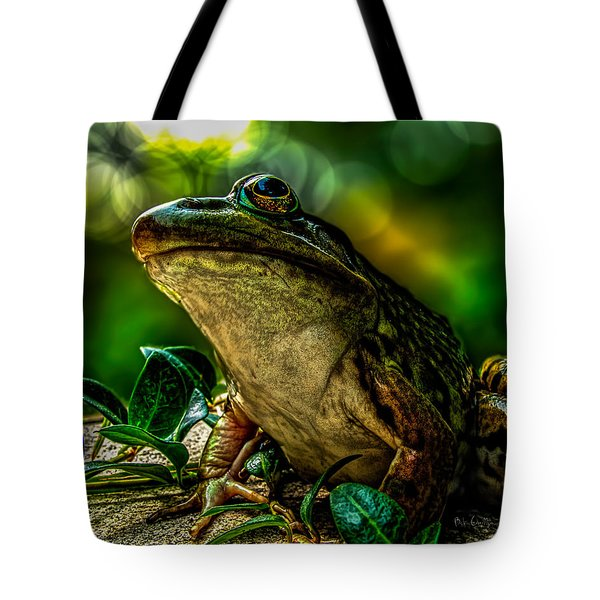 Time Spent With The Frog Tote Bag by Bob Orsillo