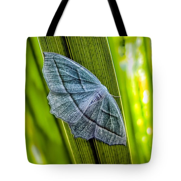 Tiny Moth On A Blade of Grass Tote Bag by Bob Orsillo