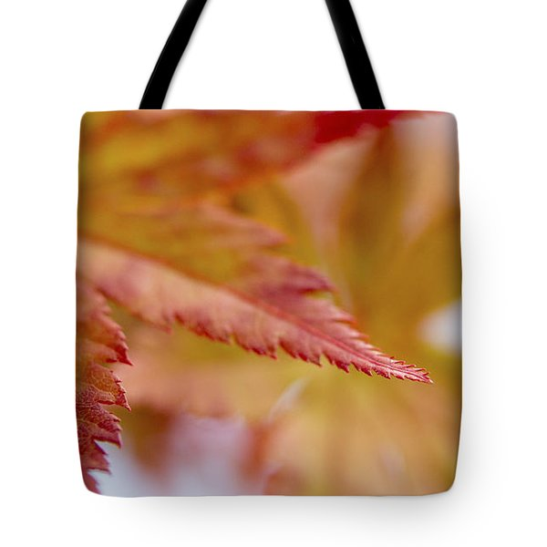 Tip Tote Bag by Caitlyn  Grasso