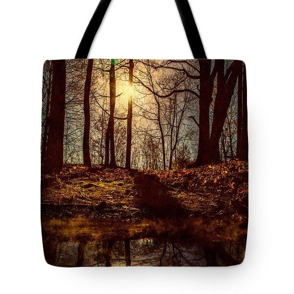 Today Tote Bag by Bob Orsillo