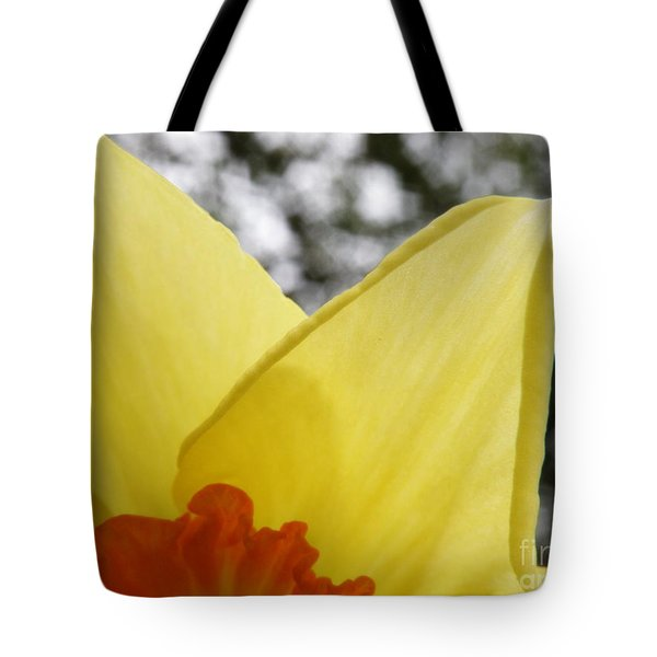 Today Tote Bag by Lainie Wrightson