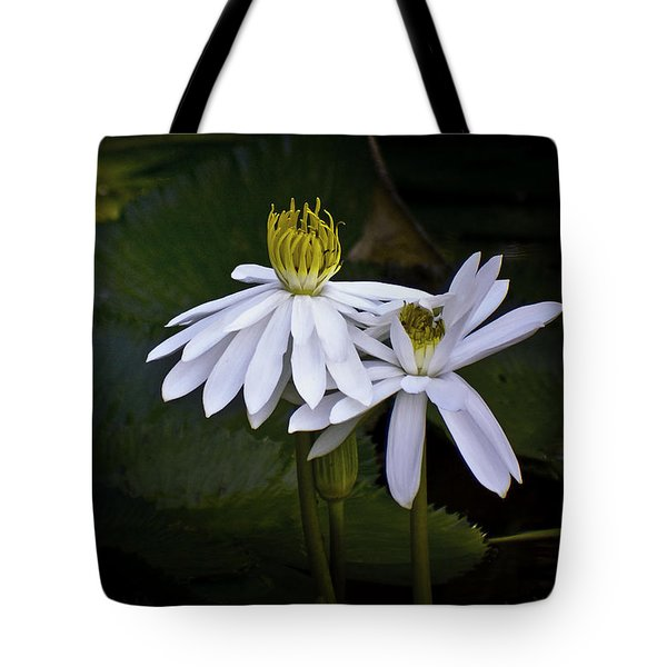 Togetherness Tote Bag by Holly Kempe